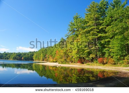 stock-photo-the-walden-pond-near-concord-ma-459169018